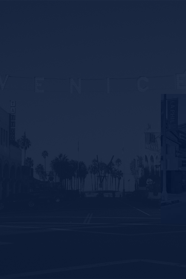 Venice Brands Background